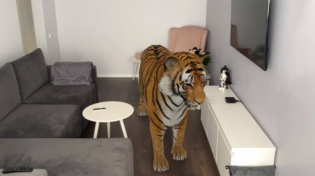 Тигр в АР