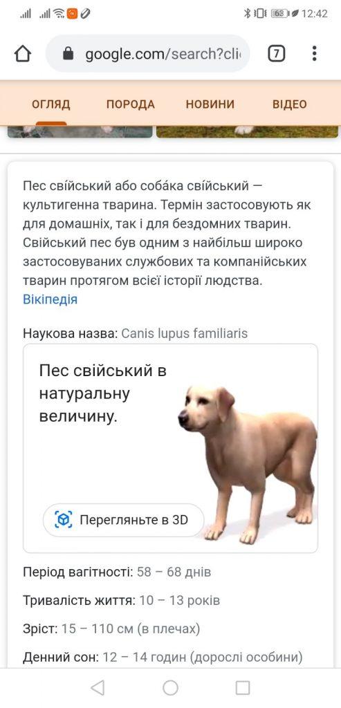 Собака в 3D